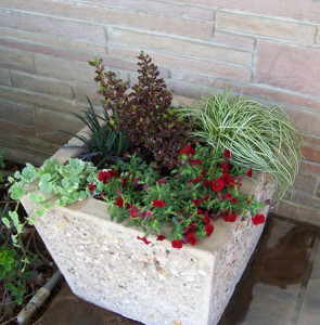 Ecological/Sustainable - Landscaping - Gardening - Container Gardening
