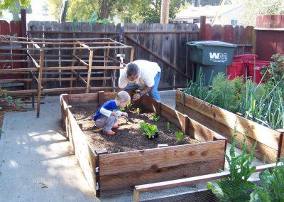 Ripon, CA - Garden Consulting Edibles Herbs