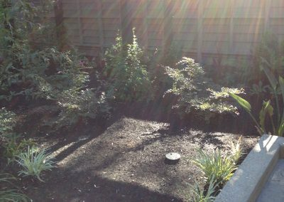 Ripon, CA - Sustainable Landscape Garden Consulting Plant Selection Assistance
