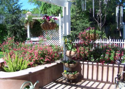 Ripon, CA - Sustainable Landscape Garden Consulting Container Gardening